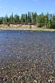 Pebble river.  — Stock Photo
