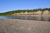 Sandy shores of the Ural river Lemva. — Foto Stock