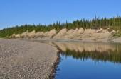 Ural river under the sun. — Stock Photo