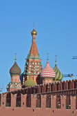 Domes of St. Basil's Cathedral on Red square in Moscow. — Foto de Stock