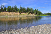 Northern river clear day. — Stock Photo