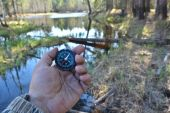 With compass in a spring forest.  — Stock Photo