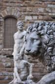 Staty av ett lejon och michelangelos david på loggia dei lanzi på piazza della signoria i florens toskana — ストック写真