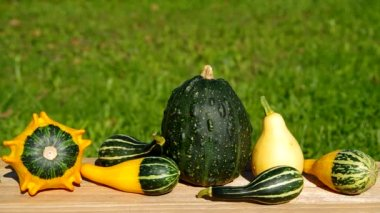 Ornamental pumpkins on wooden table — Stok video
