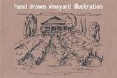 Hand drawn illustration of a vineyard — Vector de stock