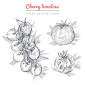 Sketchy illustration set of cherry tomatoes — Stockvektor