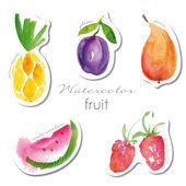 Watercolor fruit stickers set — Stock Vector