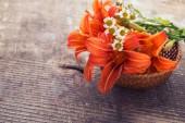 Lilia świeże kwiaty — Zdjęcie stockowe