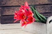 Tarjeta postal con flores de primavera — Foto de Stock