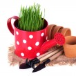 Grass in watering can and garden tools — Stock Photo #67994749