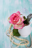 Postcard with elegant  flower — Stock Photo