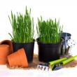 Green grass and garden tools — Stock Photo #68053807