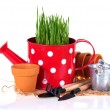 Garden tools, pots and grass in watering can — Stock Photo #68054239
