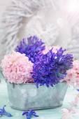 Postcard with fresh flowers hyacynths   — Stock Photo