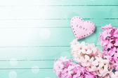 Background with fresh flowers hyacinths — Stockfoto