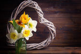 Fresh tulips, narcissus and decorative heart — Stock Photo