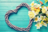 Background with fresh daffodils  and decorative heart — Foto de Stock