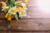 新鮮な水仙とチューリップ背景 — ストック写真