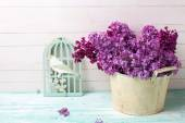Pozadí s Lila květy — Stock fotografie