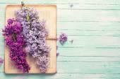 ライラック色の花と古い本はがき — ストック写真