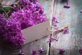 Postcard with lilac flowers and empty tag — Stock Photo