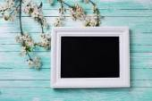 Flowering tree branches and blackboard — Stock Photo