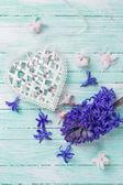 Hyazinthen-Blumen und dekorativen Herz — Stockfoto