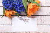 Yellow tulips and blue hyacinths — Stock Photo