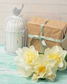 Fresh daffodil flowers and gift — Stock Photo