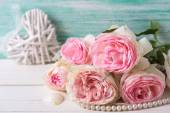 Sweet pink roses — Stock Photo