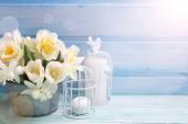 Yellow narcissus flowers — Stock Photo