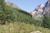 Caucasus Mountains — Stock Photo