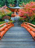Début de l'automne à Daigo Temple à Kyoto, Japon — Photo