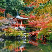 Sonbahar Kyoto Daigoji Tapınağı'nda — Stok fotoğraf