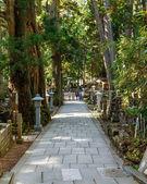 Cmentarz w okunoin świątyni w mt. koya (koya-san) w wakayama, japonia — Zdjęcie stockowe