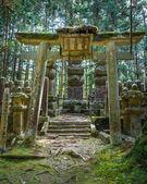 在高野山 (高野山) 在日本和歌山,墓地面积 Okunoin 寺 — 图库照片