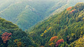 View of Moutains on the way to Koyasan in wakayama, Japan — Stock Photo