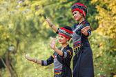 Thaise cultuurfestival — Stockfoto
