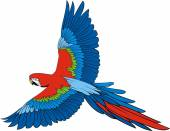 Parrot ara — Stock Vector