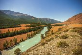 Katun River, Altai Mountains — Stock Photo