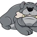 Bulldog sitting with bone on white — Stock Vector #76314435