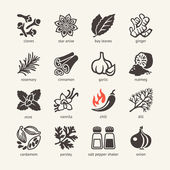 Web icon set - spices, condiments and herbs — Stock Vector
