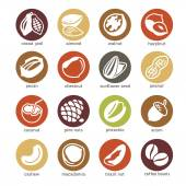 Web icon set - nuts, beans and seed — Stock Vector