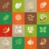 Colorful web icon set - spices, condiments and herbs — Stock Vector