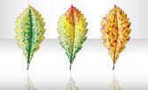 Осенние красочный лист. — Cтоковый вектор