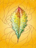 Kleurrijke herfstblad. — Stockvector