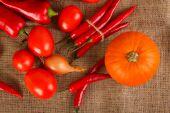 Fresh autumn vegetables lie on sacking — Stockfoto