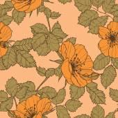 Eleganz nahtlose muster mit blumen rosen — Stockvektor