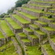 Agricultural terraces on slopes of Machu Picchu — Stock Photo #67395221
