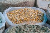 Bag of corn kernels — Stockfoto
